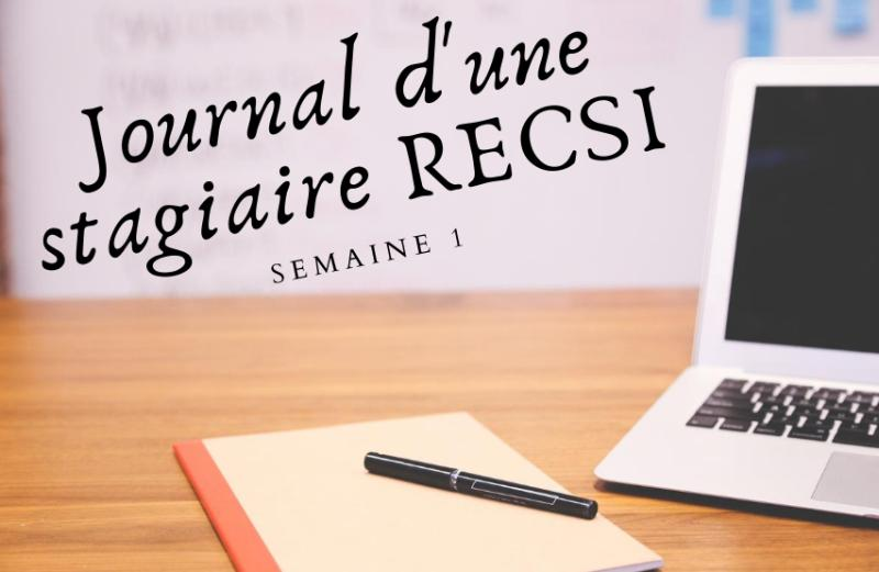 Journal d'une stagiaire RECSI